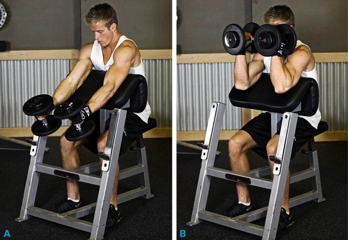 Hammer Curl for Bigger Biceps