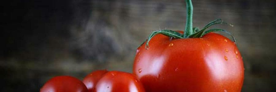 Tomato Nutrition and Health Benefits