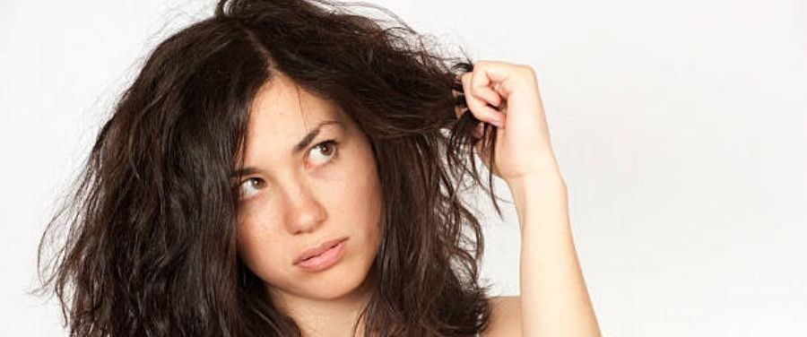 Top 10 Foods for Dull and Dry Hair