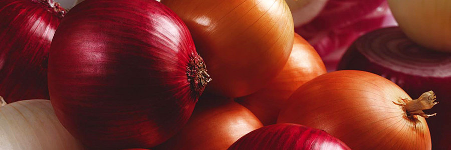onion for testosterone level