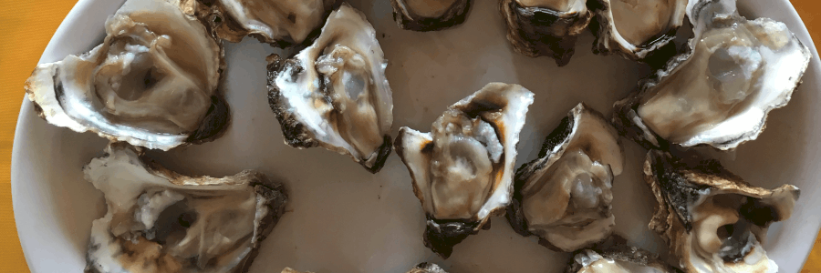 oysters to boost testosterone