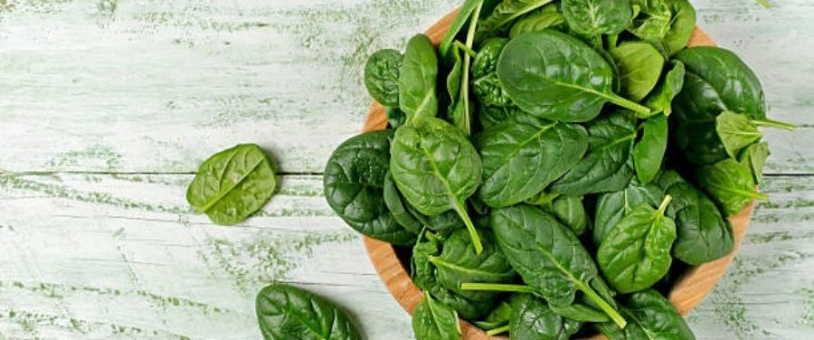 anti-aging Spinach