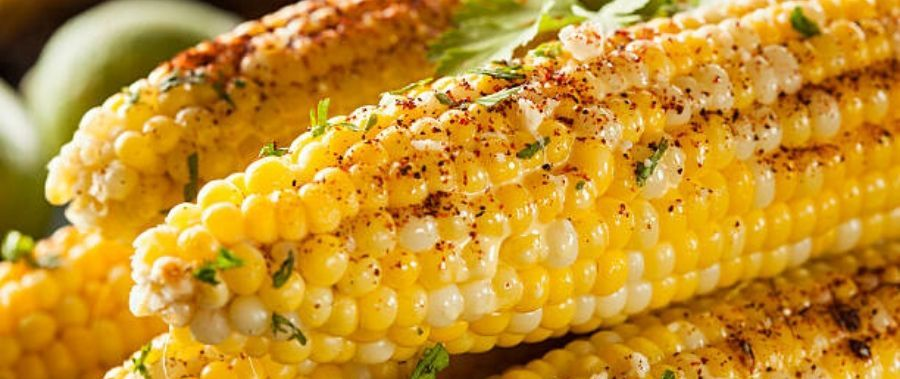 Corn : A powerhouse of carbohydrates
