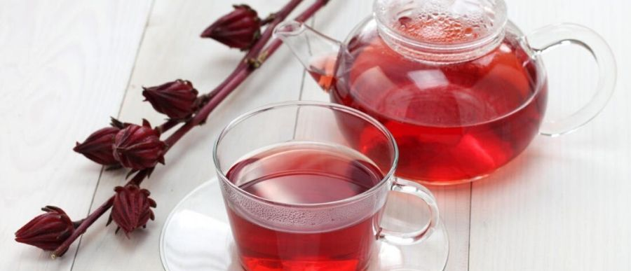 Hibiscus Tea and Its Benefits