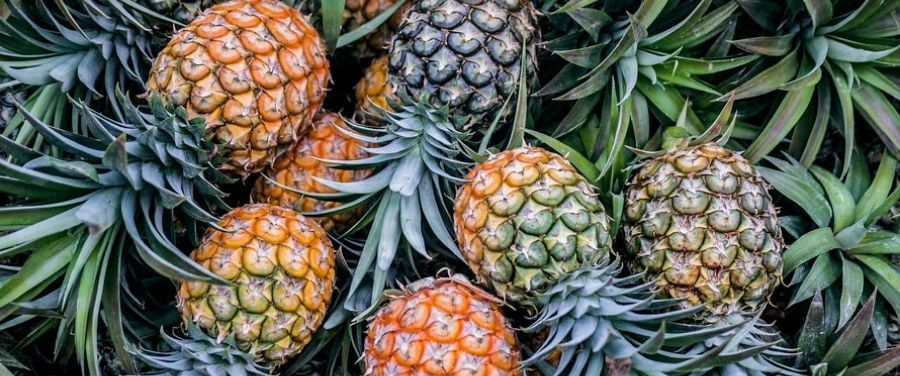 Pineapples and Health