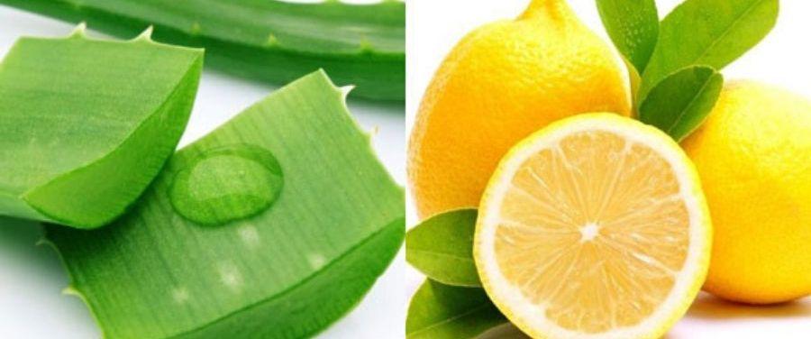 Lemon and Aloe-Vera