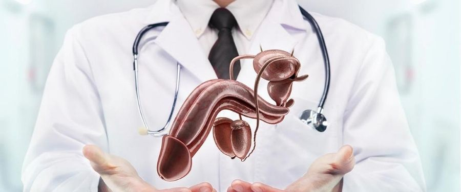 Peyronie's Disease : Causes, Symptoms, Diagnosis and Effective Treatments