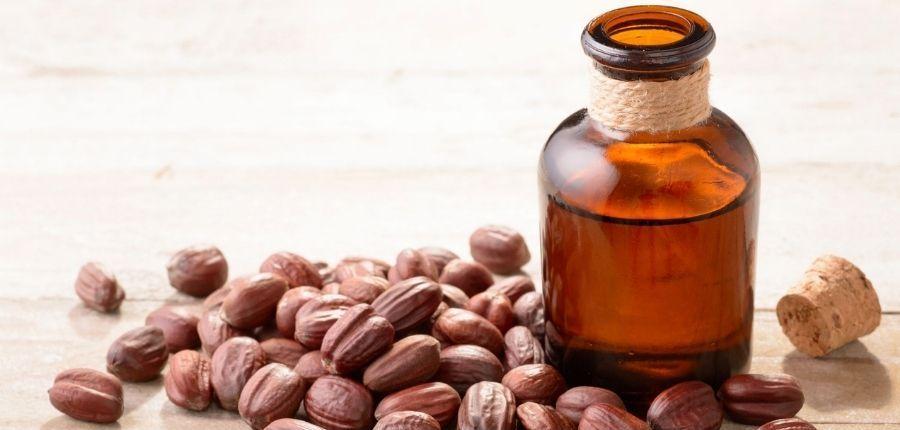 Jojoba Oil and Seeds
