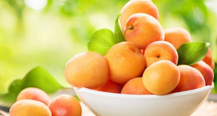 Apricot Fruits in Bowl