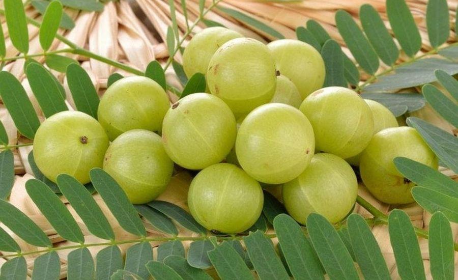 Amla (Gooseberry)