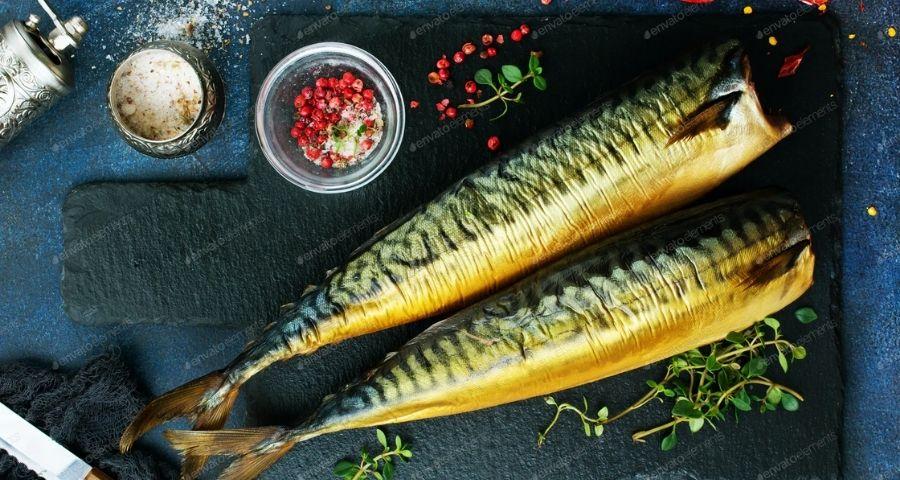 Uses of Mackerel Fish